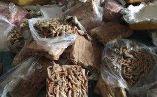 Chính trị - Xã hội - Rùng mình hình ảnh 23 tấn nội tạng thối bị bắt tại Hà Tĩnh