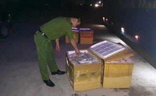 Tin nhanh - Xe giường nằm chở 6 tạ cá thể mèo thối bị bắt tại Hà Tĩnh
