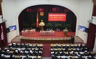 Xã hội - Thả rông trâu bò trên đường: Chỉ thị của chủ tịch tỉnh không hiệu quả?