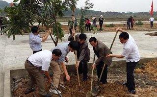 Cuộc sống xanh - Hà Tĩnh trồng hơn 1 triệu cây xanh dịp Tết Mậu Tuất 2018