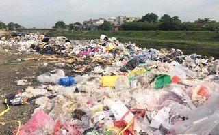 Môi trường - Hà Nội: Hai bờ sông Nhuệ bị rác... 'bức tử'