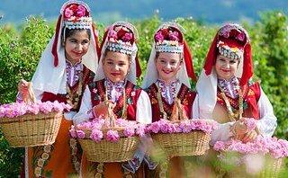 Văn hoá - 1.000 cây hồng Bulgaria sẽ được trưng bày tại Lễ hội Hoa hồng 2018