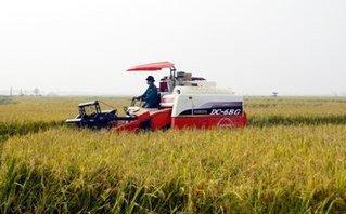 Pháp luật - Hưng Yên: 'Giang hồ' tiếp tục đòi tiền 'bảo kê' của chủ máy gặt
