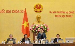 Chính trị - Thường vụ Quốc hội xem xét cho thôi nhiệm vụ ĐBQH với ông Ngô Đức Mạnh