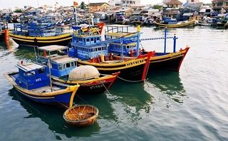 Chính trị - Xã hội - Hải Phòng: Lập quy hoạch trung tâm nghề cá gắn với ngư trường Vịnh Bắc Bộ