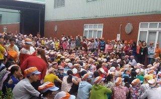 Xã hội - Hải Dương: Hàng nghìn công nhân công ty GFT đi làm lại