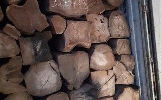 An ninh - Hình sự - Bắt giữ 2 xe container chở 42 tấn gỗ giáng hương Tây Phi nhập lậu