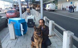 Xã hội - Chuyện về người đầu tiên đưa giống chó Đức về Việt Nam