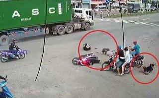 Video - Clip: Tạt đầu container, thanh niên tông văng đôi nam nữ xuống đường