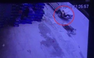 Xa lộ - Clip: Truy tìm ô tô tông văng người phụ nữ trên đường rồi bỏ chạy