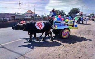 Mới- nóng - Clip: Độc đáo với màn rước dâu bằng xe trâu có 1-0-2 ở Bình Thuận