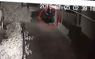 Mới- nóng - Clip: Bi hài cảnh trộm mang xe trả lại, đóng cửa cẩn thận cho chủ nhà