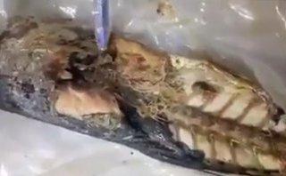 Mới- nóng - Xôn xao clip học sinh phát hiện hàng chục con giun trong cá nục