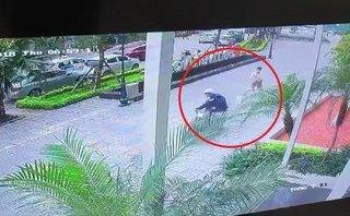 Mới- nóng - Clip: Cẩu tặc táo tợn cướp chó ngay trước sảnh chung cư ở Hà Nội