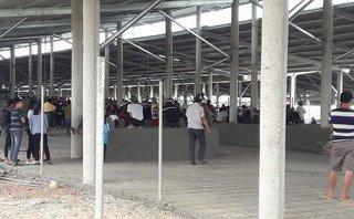 Môi trường - Quảng Bình: Dân mang ruồi chết đến trại bò biểu tình ô nhiễm