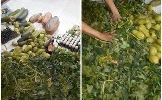 Chính trị - Xã hội - Sở GD&ĐT Vĩnh Phúc yêu cầu báo cáo vụ thực phẩm bẩn vào trường học
