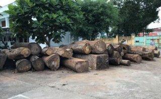 An ninh - Hình sự - Khởi tố Trưởng Công an xã phá rừng ở lâm phần UBND xã quản lý