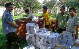 Xã hội - Gia Lai: Xử phạt hàng loạt cơ sở vi phạm an toàn thực phẩm