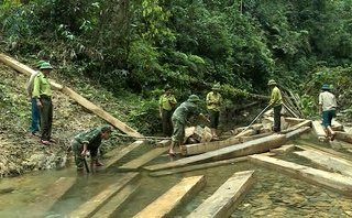 Tin nhanh - Quảng Bình: Kỷ luật hàng loạt cán bộ vụ rừng phòng hộ bị 'xẻ thịt'