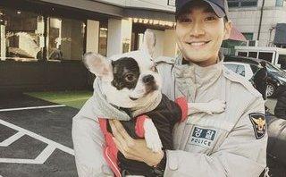 Giải trí - Chó cưng của nam ca sĩ Si Won cắn chết hàng xóm: Người nhà nạn nhân lên tiếng