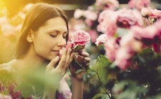 Gia đình - Phụ nữ nên nhớ, hạnh phúc của mình mới là việc đáng lưu tâm