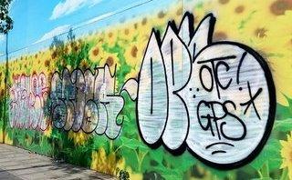 Dân sinh - TP.HCM: Graffiti nửa mùa tràn lan gây mất mỹ quan đô thị