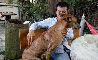 Xã hội - Tỷ phú tuổi 30  nhờ nuôi chó Phú Quốc