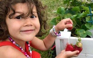 Gia đình - Mê mẩn vườn rau củ của bà mẹ Việt kiều ở đất nước Canada