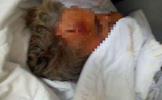 Tin nhanh - Một khách nước ngoài chết vì bệnh lý, gia đình không đủ điều kiện nhận thi thể
