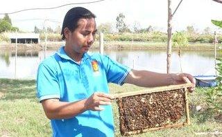 Dân sinh - Độc đáo mô hình nuôi ong trong thùng xốp mang lại thu nhập cao