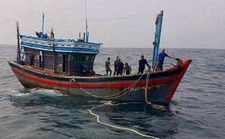 Chính trị - Xã hội - Tìm kiếm ngư dân rơi xuống biển mất tích