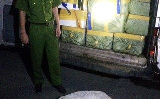 Tin nhanh - Quảng Ninh: Bắt giữ, tiêu hủy hơn 2,7 tấn cá đông lạnh nhập lậu