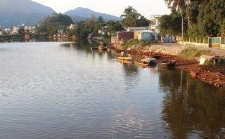 Môi trường - Đà Nẵng: Nước sông đổi màu lạ, dân lo lắng vì cá chết