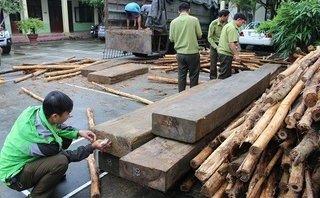 Điểm nóng - Quảng Nam: Hàng chục phách gỗ lậu được ngụy trang trên thùng xe tải