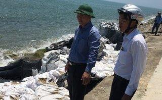 Môi trường - Biển Cửa Đại tan hoang, Quảng Nam họp khẩn tìm giải pháp