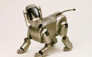Công nghệ - Sony Aibo, chú chó robot sẽ trở lại với tính năng trợ lý ảo