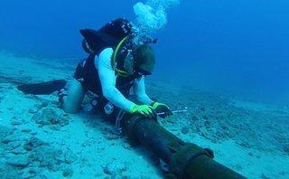 Công nghệ - Hoàn tất sửa chữa cáp quang biển APG vào cuối tuần này