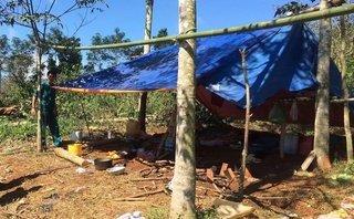 Chính trị - Xã hội - Đắk Nông: Trú mưa bị sét đánh, 3 người thương vong