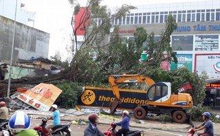 Tin nhanh - Đang xử lý hiện trường vụ cây đa cổ thụ ngã đè sập nhiều cửa hàng