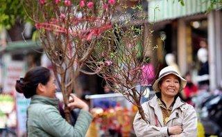 Cộng đồng mạng - Nữ doanh nhân trẻ Tuệ Nghi: Đừng đợi tới chập tối 30 Tết mới đi mua hoa
