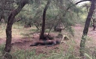 Chính trị - Xã hội - Nhặt củi trong rừng, hoảng hồn phát hiện thi thể nghi chết cháy