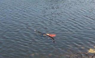 Chính trị - Xã hội - Nghệ An: Đi câu cá, phát hiện thi thể người đàn ông nổi trên mặt nước