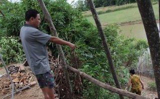 Chính trị - Xã hội - Nghệ An: Sạt lở nghiêm trọng sau bão, dân trắng đêm cầu nguyện