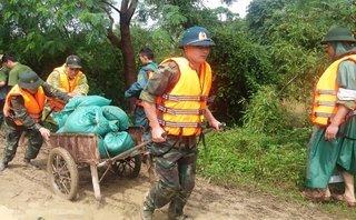 Chính trị - Xã hội - Nguy cơ vỡ đê sông Vinh, tính mạng hơn 4.000 người bị đe dọa