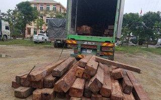 An ninh - Hình sự - Bắt giữ xe container vận chuyển số lượng gỗ trị giá 700 triệu đồng
