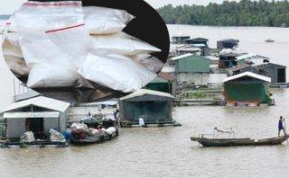 An ninh - Hình sự - Phú Thọ: Triệt phá ổ nhóm bán ma túy tại bè cá trên sông