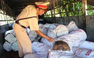 Xã hội - Kinh hoàng 6 tấn tóp mỡ hôi thối được chở đi tiêu thụ