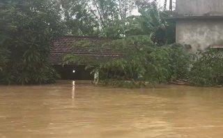 Xã hội - Đà Nẵng: Nhiều nhà dân nước ngập gần mái