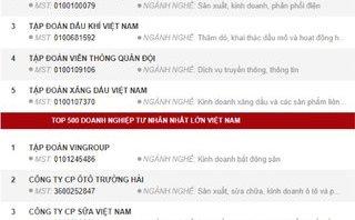 Đầu tư - Năm 2017, doanh nghiệp tư nhân nào xếp hạng lớn nhất Việt Nam?