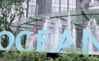 Đầu tư - Ocean Group mạnh tay thay Tổng giám đốc